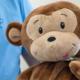 Michael Knapp Zahnarztpraxis Fulda – Kinder-Zahnheilkunde Affe